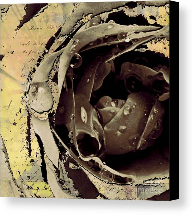 Canvas Print featuring the mixed media Life IIi by Yanni Theodorou