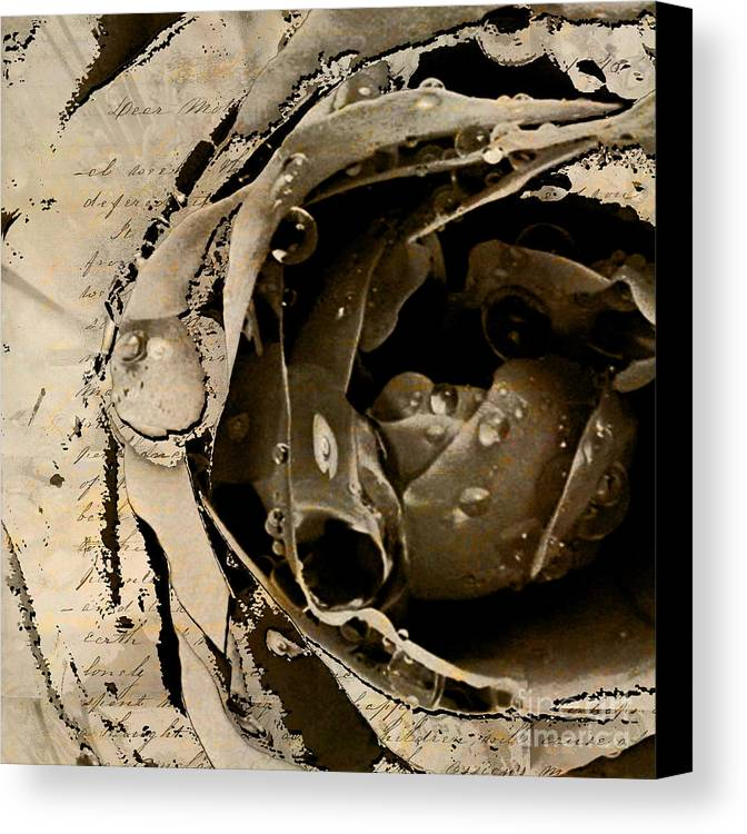 Canvas Print featuring the mixed media Life V by Yanni Theodorou