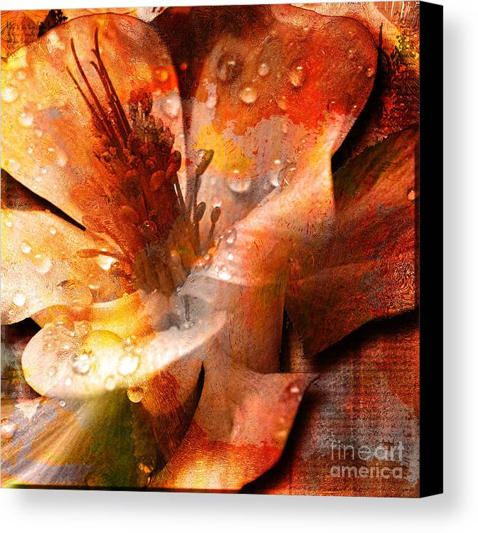 Canvas Print featuring the mixed media Seeds II by Yanni Theodorou