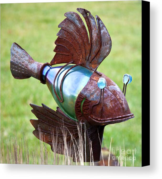 Fish Photography Prints Canvas Print featuring the photograph Metal Fish by Loriannah Hespe