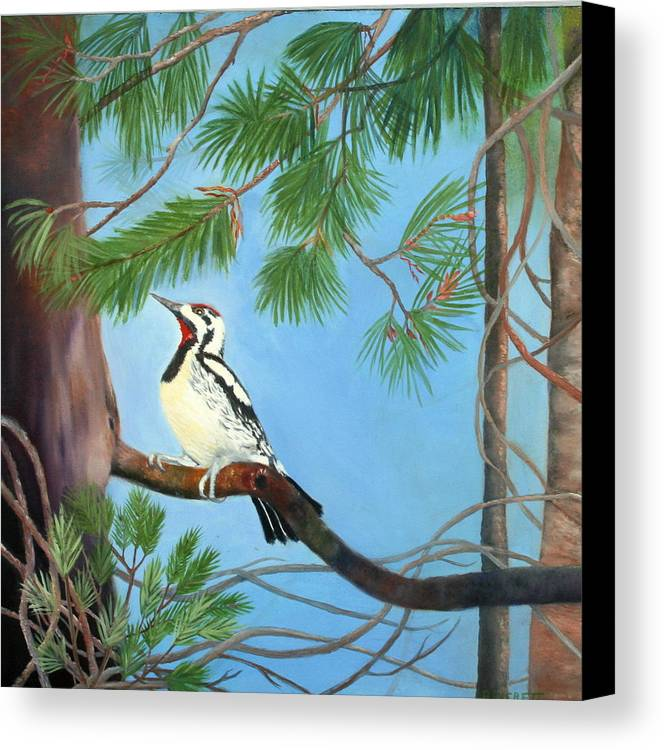 Birds Canvas Print featuring the painting Woodpecker by Brenda Everett