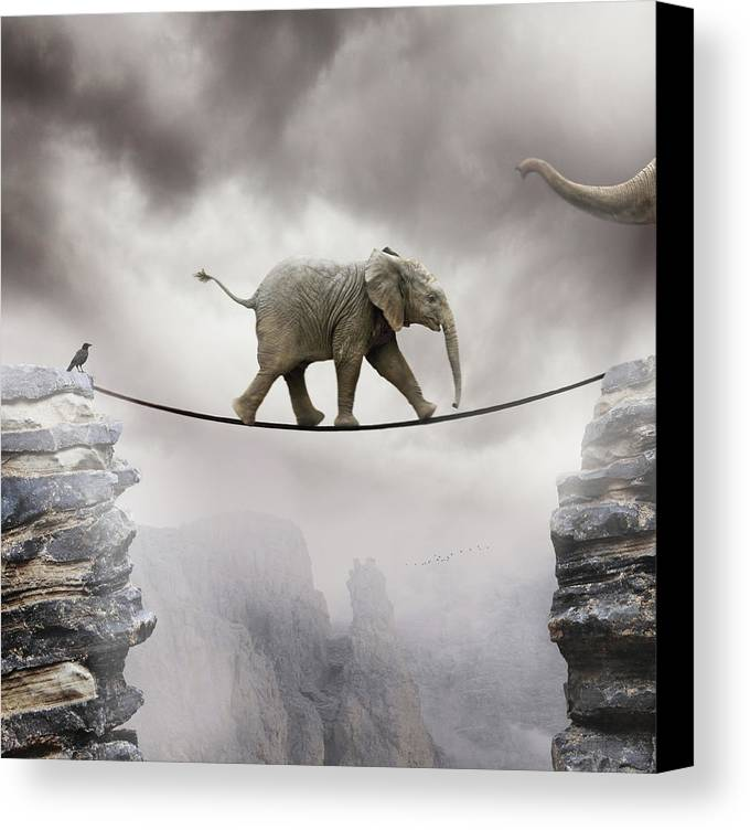 Vertical Canvas Print featuring the photograph Baby Elephant by by Sigi Kolbe