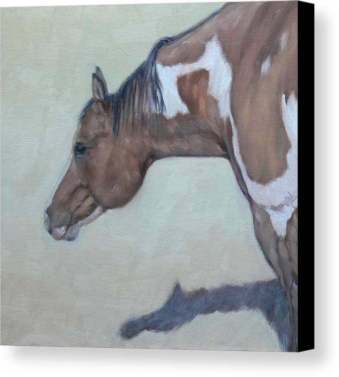 Horse Canvas Print featuring the painting Cisco Kid by Ruth Andre