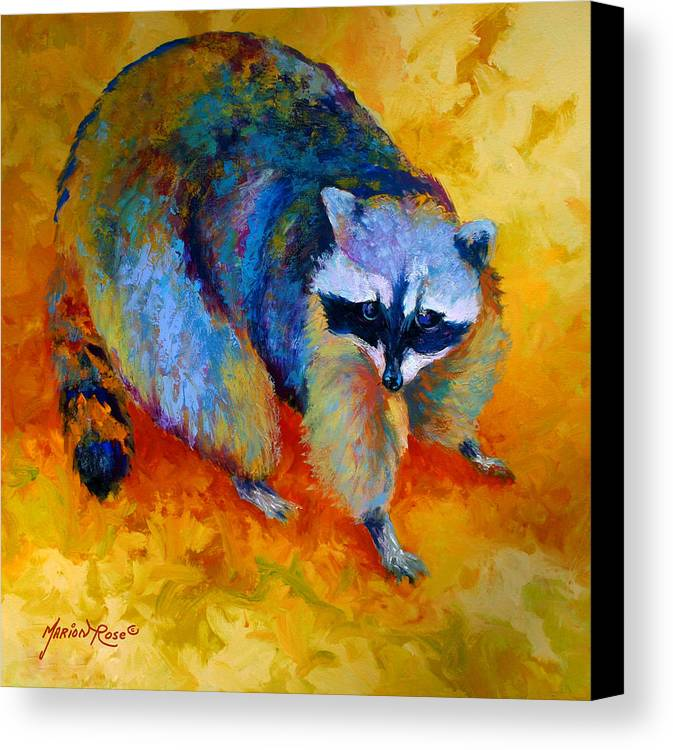Racoon Canvas Print featuring the painting Coon by Marion Rose