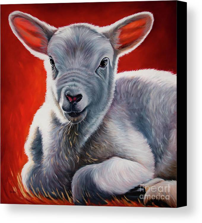 Lamb Canvas Print featuring the painting Day 1 / The Sacrificy by Ilse Kleyn