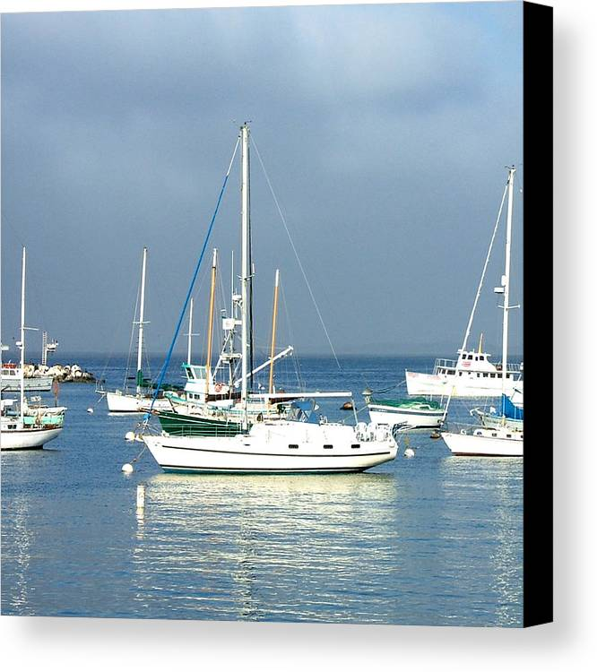 Seascapes Canvas Print featuring the photograph Monterey Bay by Donna Thomas