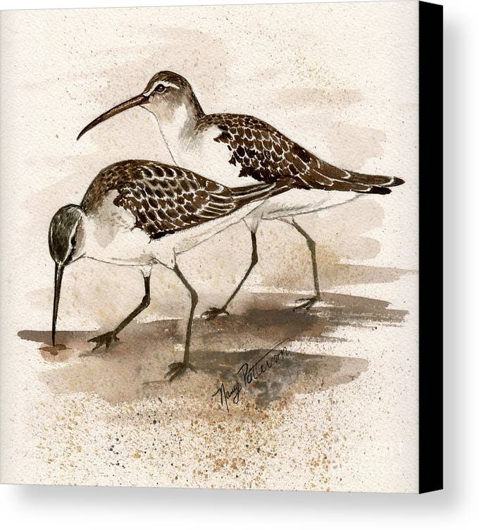 Sandpipers Canvas Print featuring the painting Pair Of Sandpipers by Nancy Patterson