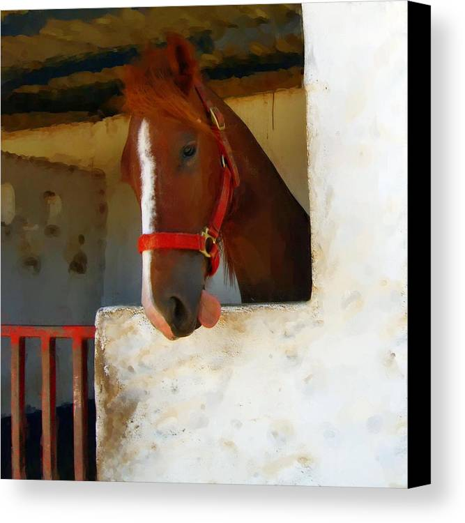 Horse Canvas Print featuring the painting What Do Horses Think Of Us by Jonathan Galente