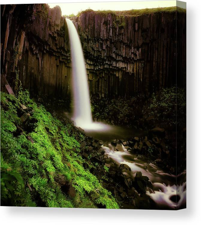 Photography Canvas Print featuring the photograph Svartifoss Waterfall, Skaftafell by Panoramic Images