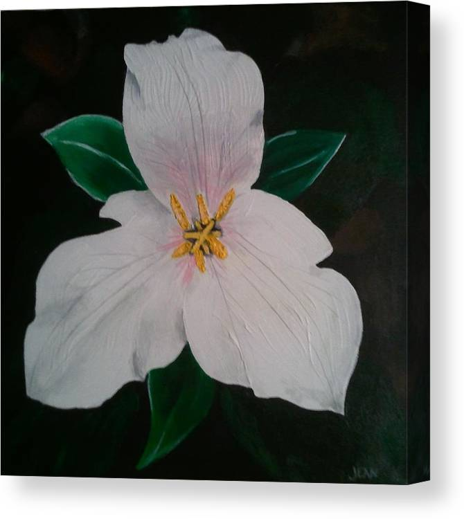 Trillium Canvas Print featuring the painting Trillium Captured In Acrylic by Jean Kieffer