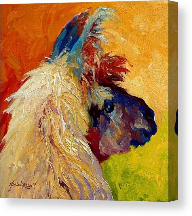 Llama Canvas Print featuring the painting Calico Llama by Marion Rose