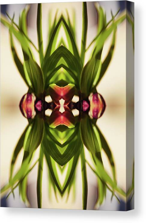 Fritillaria Canvas Print featuring the photograph Fritillaria Flower Plant by Silvia Otte