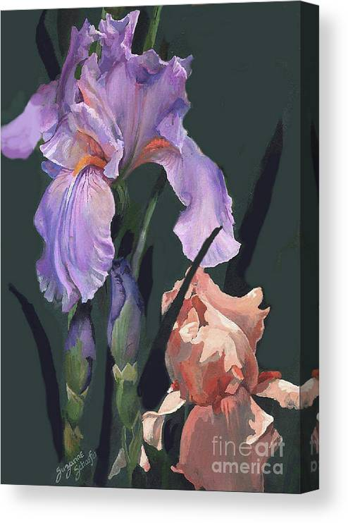Flowers Canvas Print featuring the painting Iris Study by Suzanne Schaefer