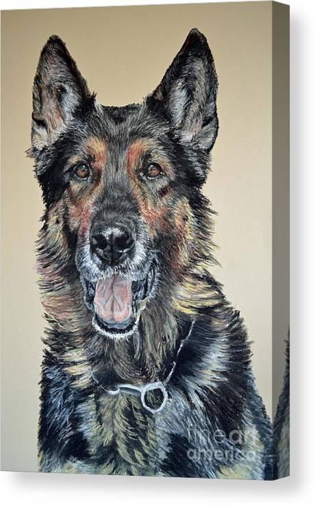 Schutzhund Canvas Print featuring the pastel German Shepherd Jim by Ann Marie Chaffin
