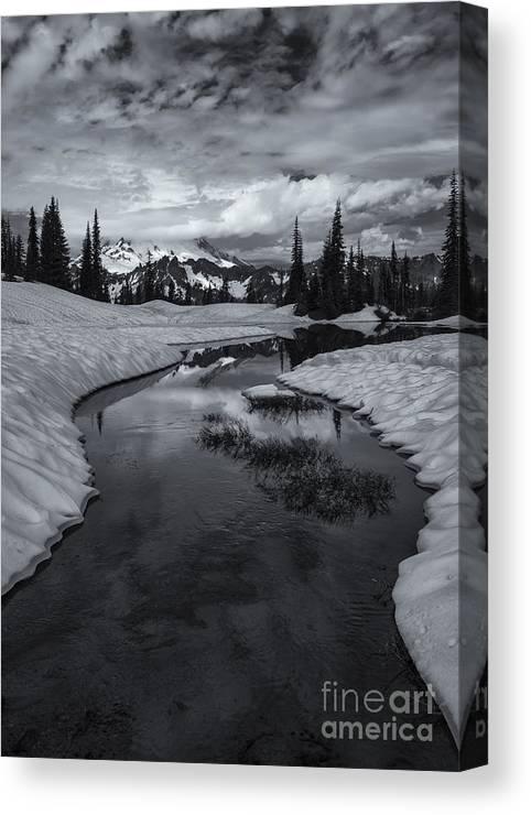 Mt. Rainier Canvas Print featuring the photograph Hidden Beneath The Clouds by Mike Dawson