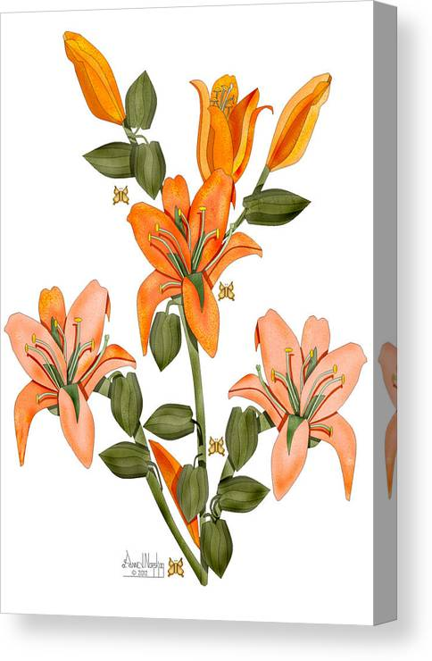 Anne Norskog Canvas Print featuring the painting Living Sculpture I Peach Lily Flowers and Buds by Anne Norskog