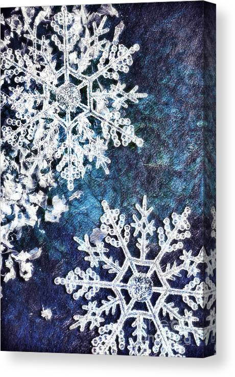 Snowflakes Canvas Print Canvas Art By Hd Connelly