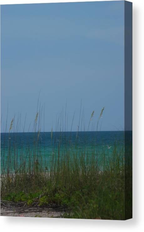 Landscape Canvas Print featuring the photograph Holmes Beach Florida 2 by Lisa Gabrius