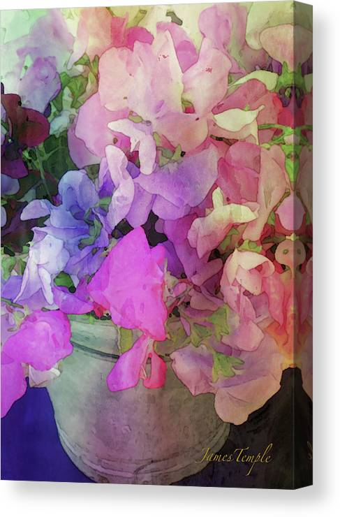 Bucket Of Peas Canvas Print featuring the digital art Bucket Of Peas Digital Watercolor by James Temple