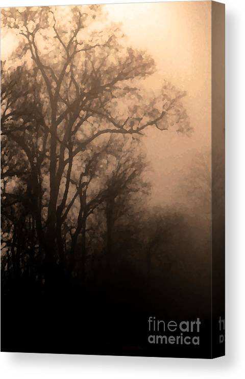 Soft Canvas Print featuring the photograph Caught Between Light And Dark by Amanda Barcon