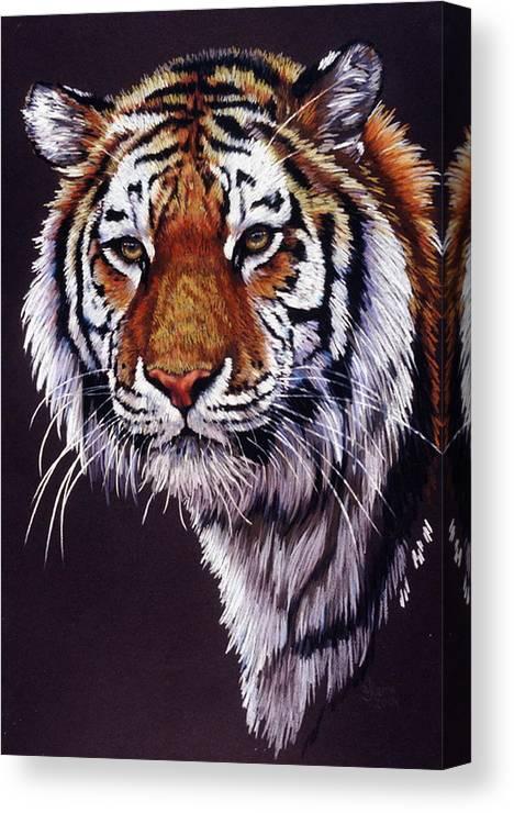 Tiger Canvas Print featuring the drawing Desperado by Barbara Keith