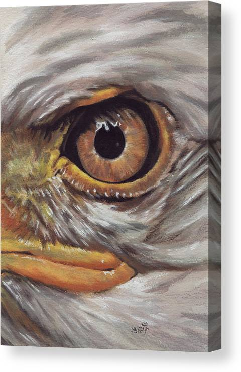 Eagle Canvas Print featuring the painting Bald Eagle Gaze by Barbara Keith