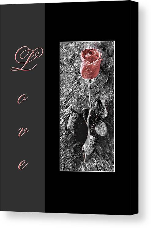 Rose Canvas Print featuring the mixed media Love Greeting Card by Kenneth Krolikowski