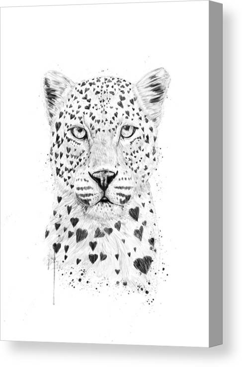 Leopard Canvas Print featuring the drawing Lovely leopard by Balazs Solti
