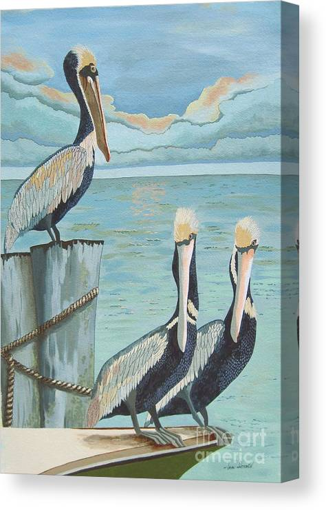 Seascape Canvas Print featuring the painting Pelicans Three by Jennifer Donald