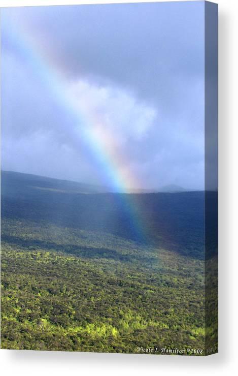 Rainbow Canvas Print featuring the photograph Rainbow by Nicole I Hamilton