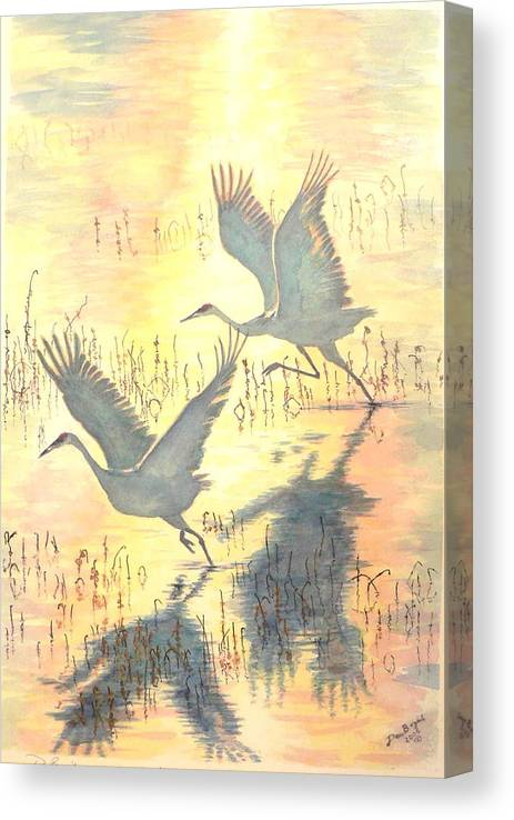 Cranes Taking Flight Canvas Print featuring the painting Sandhill Cranes by Dan Bozich