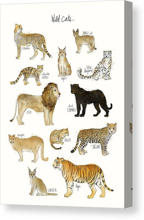 Wild Canvas Print featuring the painting Wild Cats by Amy Hamilton