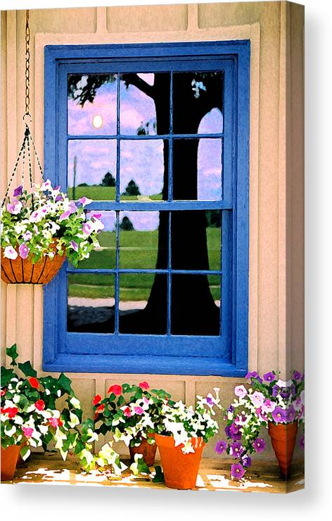 Still Life Canvas Print featuring the photograph Window by Steve Karol