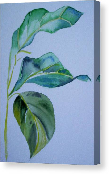 Nature Canvas Print featuring the painting Window View by Suzanne Udell Levinger