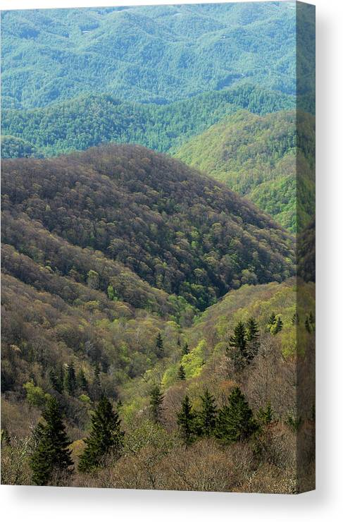 Scenics Canvas Print featuring the photograph Early Spring, North Carolina by Jerry Whaley