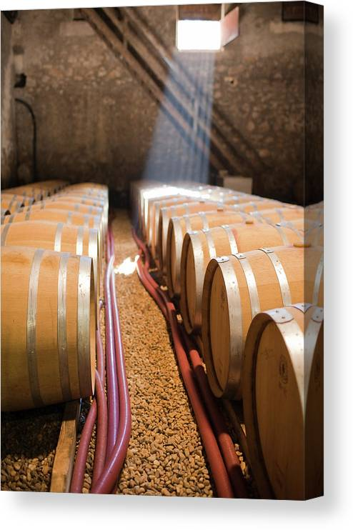 Alcohol Canvas Print featuring the photograph Barrels In Wine Cellar by Johner Images