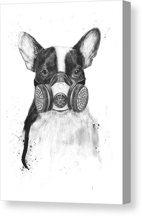 Dog Canvas Print featuring the drawing Big city life by Balazs Solti