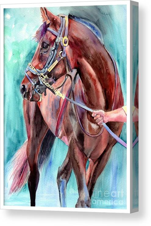 Watercolor Canvas Print featuring the painting Classical Horse Portrait by Suzann Sines