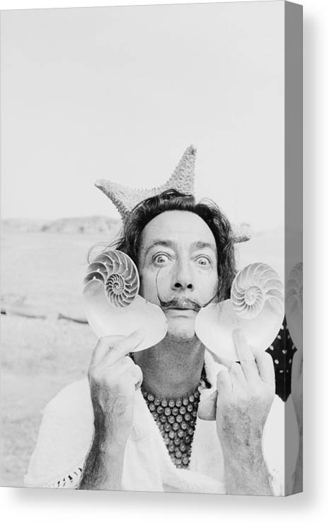 Painter Canvas Print featuring the photograph Dali With Shells by Charles Hewitt