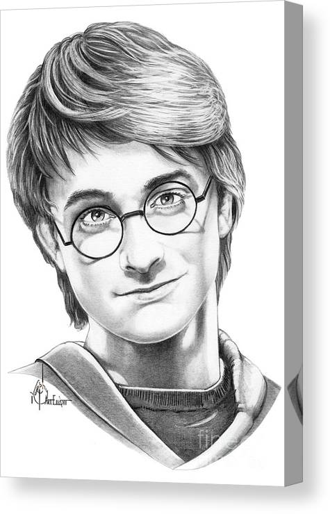 Drawing Canvas Print featuring the drawing Harry Potter by Murphy Elliott
