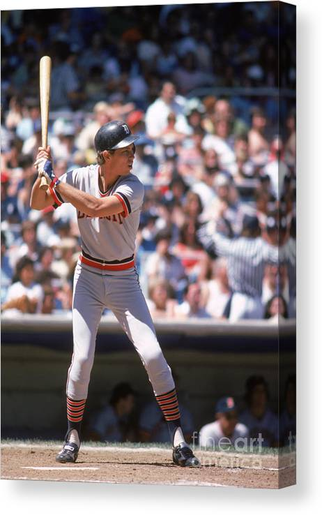 American League Baseball Canvas Print featuring the photograph Alan Trammell by Rich Pilling