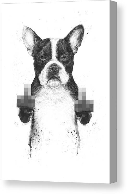 Dog Canvas Print featuring the mixed media Censored dog by Balazs Solti