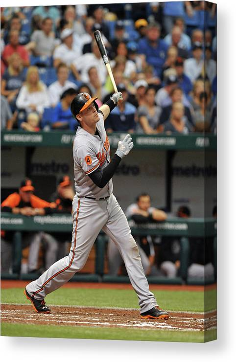 Baseball Catcher Canvas Print featuring the photograph Matt Wieters by Al Messerschmidt