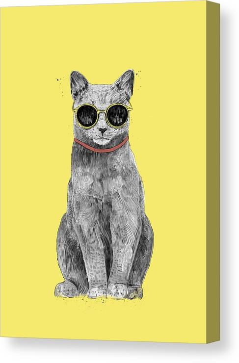 Cat Canvas Print featuring the drawing Summer Cat by Balazs Solti