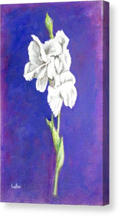 Canvas Print featuring the painting Gladiolus 2 by Usha Shantharam