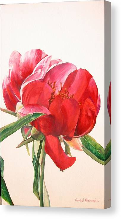 Floral Painting Canvas Print featuring the painting Pivoine 2 by Muriel Dolemieux