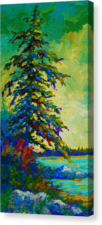 West Coastal Canvas Print featuring the painting West Coast Sentinel by Marion Rose