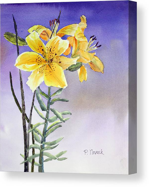 Lily Canvas Print featuring the painting Daylilies by Patricia Novack