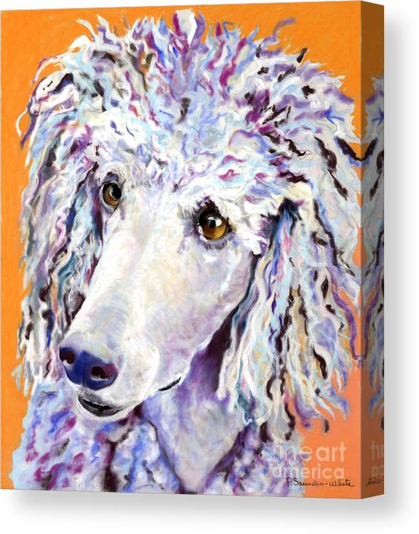 Standard Poodle Canvas Print featuring the pastel Above The Standard  by Pat Saunders-White