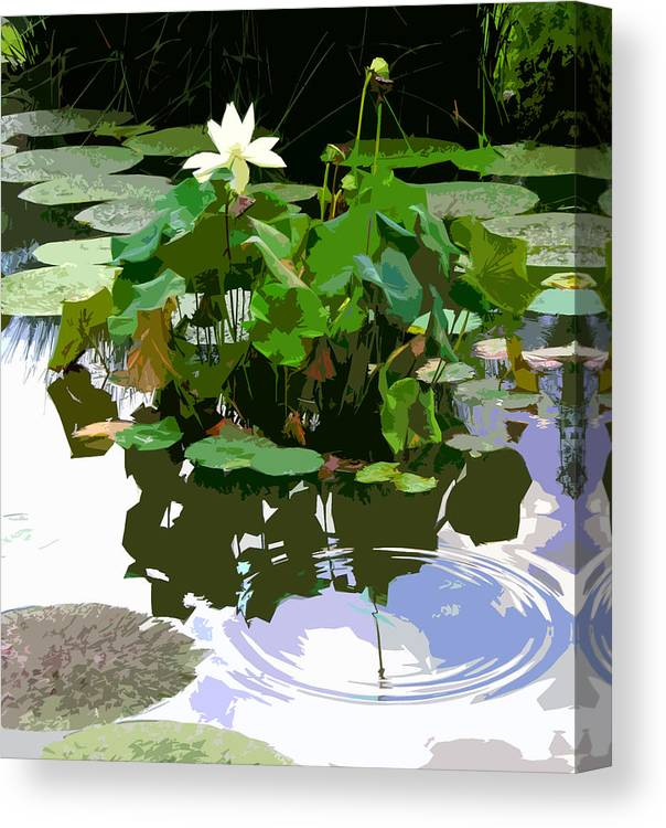Lotus Canvas Print featuring the photograph Ripples on the Lotus Pond by John Lautermilch
